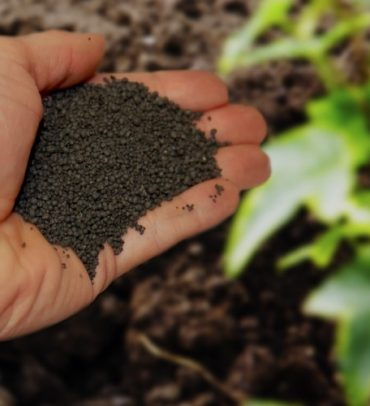 Milorganite…The Perfect Fertilizer for Your Lawn