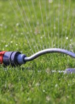 Watering…What to know!