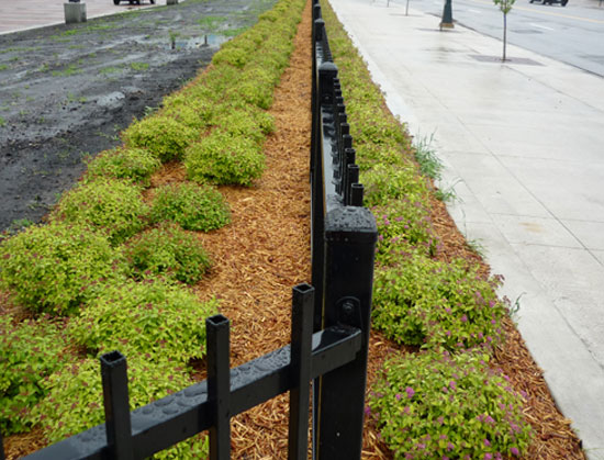Landscape Planting By Fence